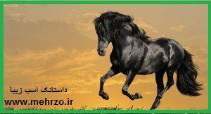 داستانک پندآموز-اسب زیبا