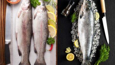 خواص ماهی قزل آلا برای سلامت زندگی