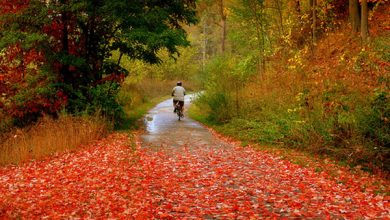 مهر پاییزی